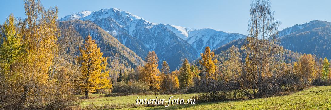 Осень в долине Чарыша в Горном Алтае