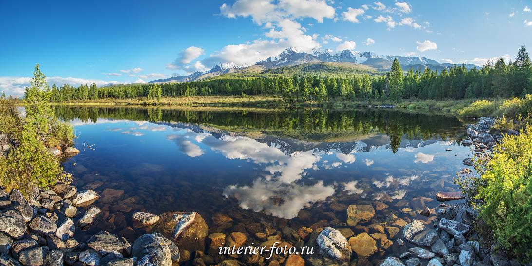 Лесное озеро на Алтае