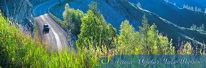 Алтай. Перевал Чике-Таман (6488)