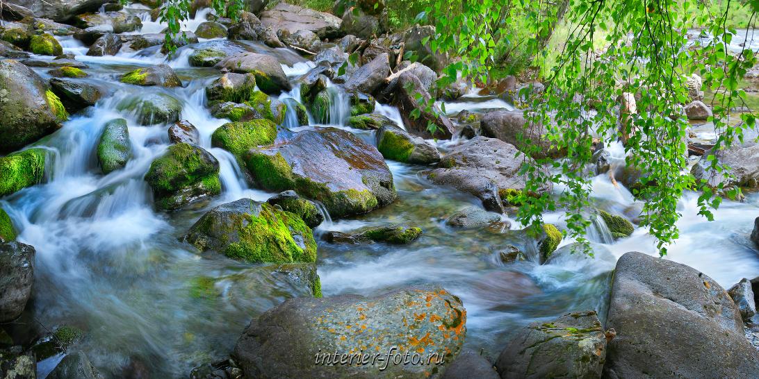 Алтай летом Горный ручей