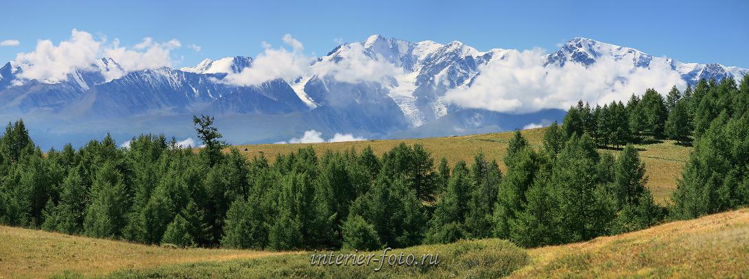 Алтай летом Горы