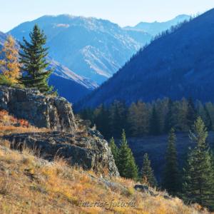 Долина Урсула Горы Алтая