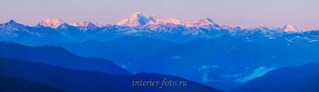 Белуха на рассвете с перевала Ачик. Алтай (6431)