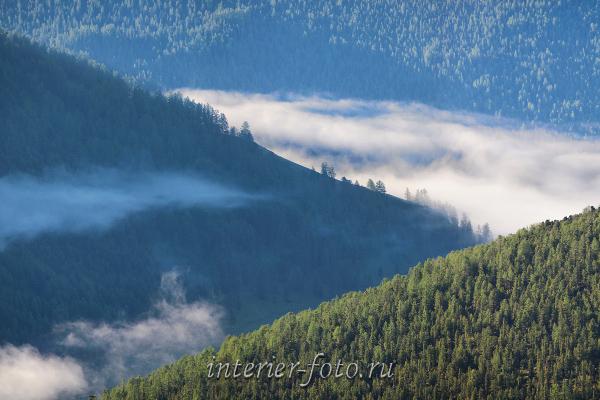 Туман в горах. Алтай