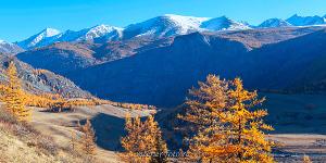 Яркие фотографии Алтай