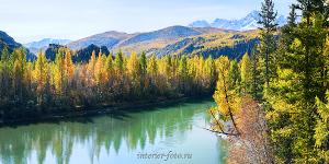 Осенняя Чуя