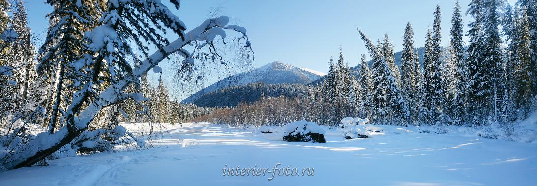 Природа в объективе Зима