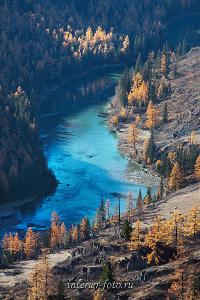 Осень на Чуе Алтай