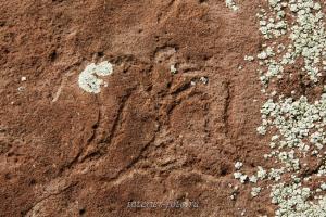 Рисунок на Сафроновском могильнике