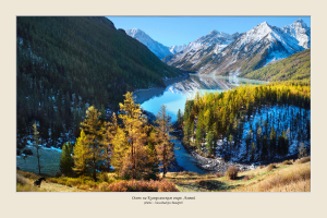 seriya-fotografij-1592