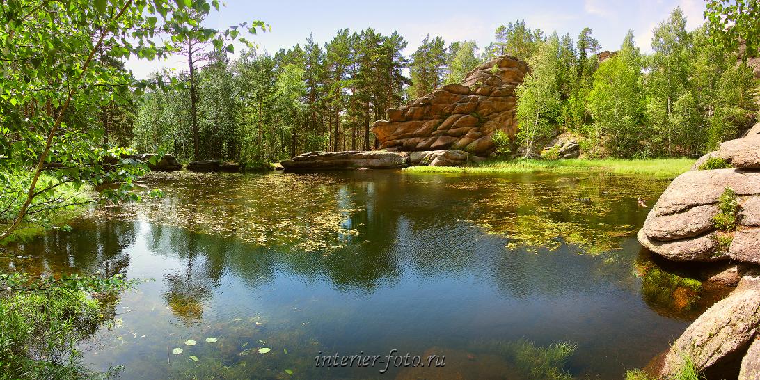 Уголок природы Озеро