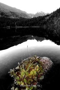 Каракольские озера. Алтай (3001)