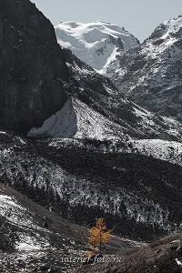 Верховья Каракабакского ущелья. Алтай (3030)