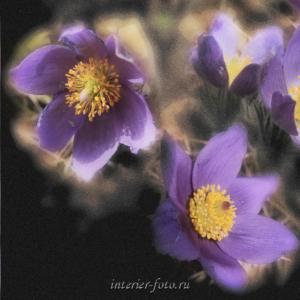 Цветы для полиптиха