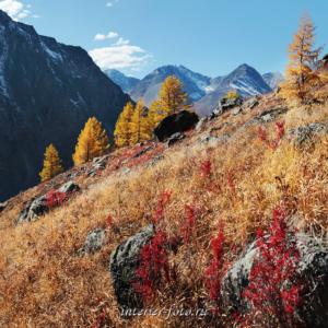 Квадратные картинки Северо-Чуйский хребет