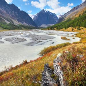 Долина реки Актру. Чуйские белки. Алтай (4228)