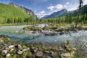 Река Маашей Алтай