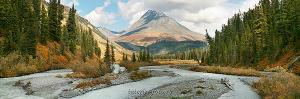 Верховья Белой Берели. Большой Алтай (6136)