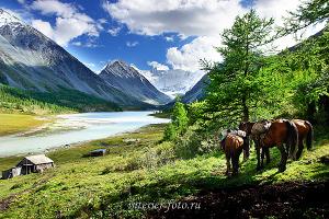 Виды природы Белуха