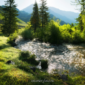 Река Большой Ильгумень на Алтае