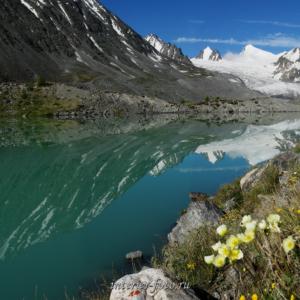 Квадратное фото Озеро на Южно-Чуйском хребте, Аккол