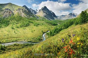 Долина Каракабак. Алтай (1486)