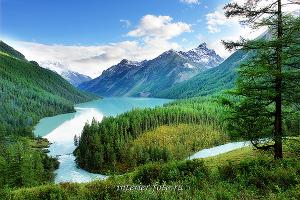 Кучерлинское озеро. Алтай (1497)