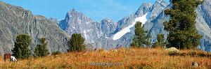 Осенний день на Катунском хребте. Кокколь. Большой Алтай (6145)