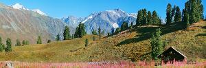 Нижний лагерь Кокколь. Подножие Белухи. Большой Алтай (6146)