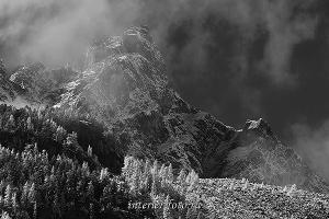 Вершина на Катунском хребте