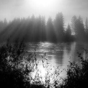 Черно-белая фотография Туманное утро на Иркуте