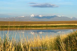 Гора Ирбисту из Чуйской степи