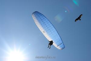Взгляд фотографа Параплан в небе Алтая