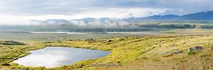 Туманное утро на плато Укок