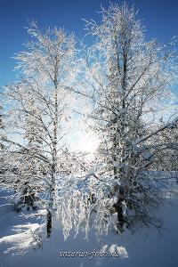 Зима в Саянах - Теплый ключ