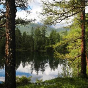 Берега озера Ару-Кем поросли лесом