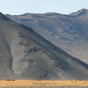 Монгольские пейзажи