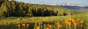 Предгорья горы Красной - Кайтанакский перевал