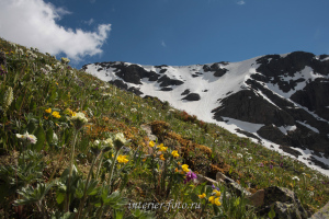Цветущие склоны - гора Красная