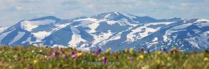 Вид на хребет Холзун с горы Красной