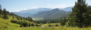 Вид с Кайтанакского перевала в сторону Катунского хребта