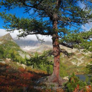 На подходе к озеру Харатас - Золотая долина