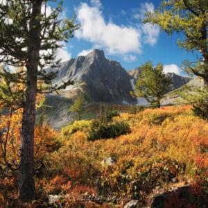 Осень в Золотой долине