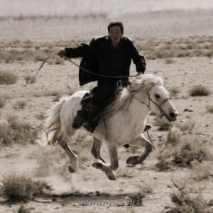 Всадник - Монголия