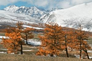 Пейзажи Монгольского Алтая