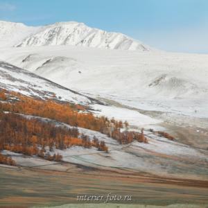 Монгольский Алтай осенью