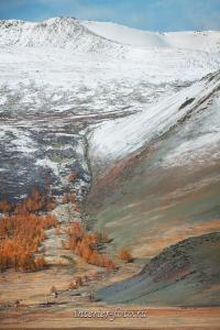 Вершины Монгольского Алтая