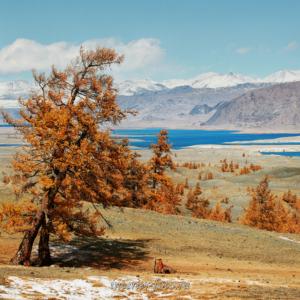 Показалось озеро Хурган - Монголия