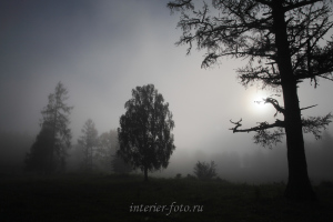 Туман на Катуни