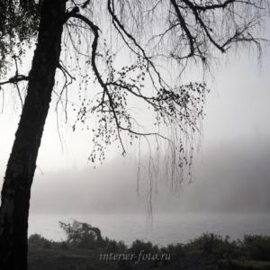Туманное утро на Катуни